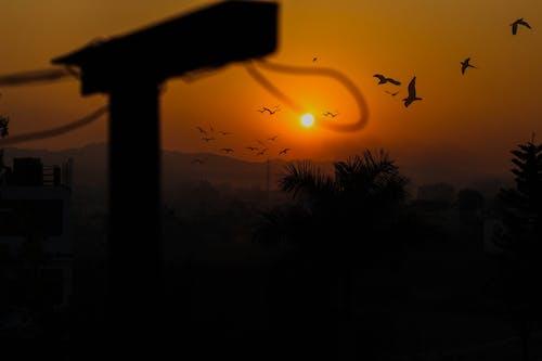 Immagine gratuita di cielo arancione, cielo drammatico, paesaggio, sole della sera