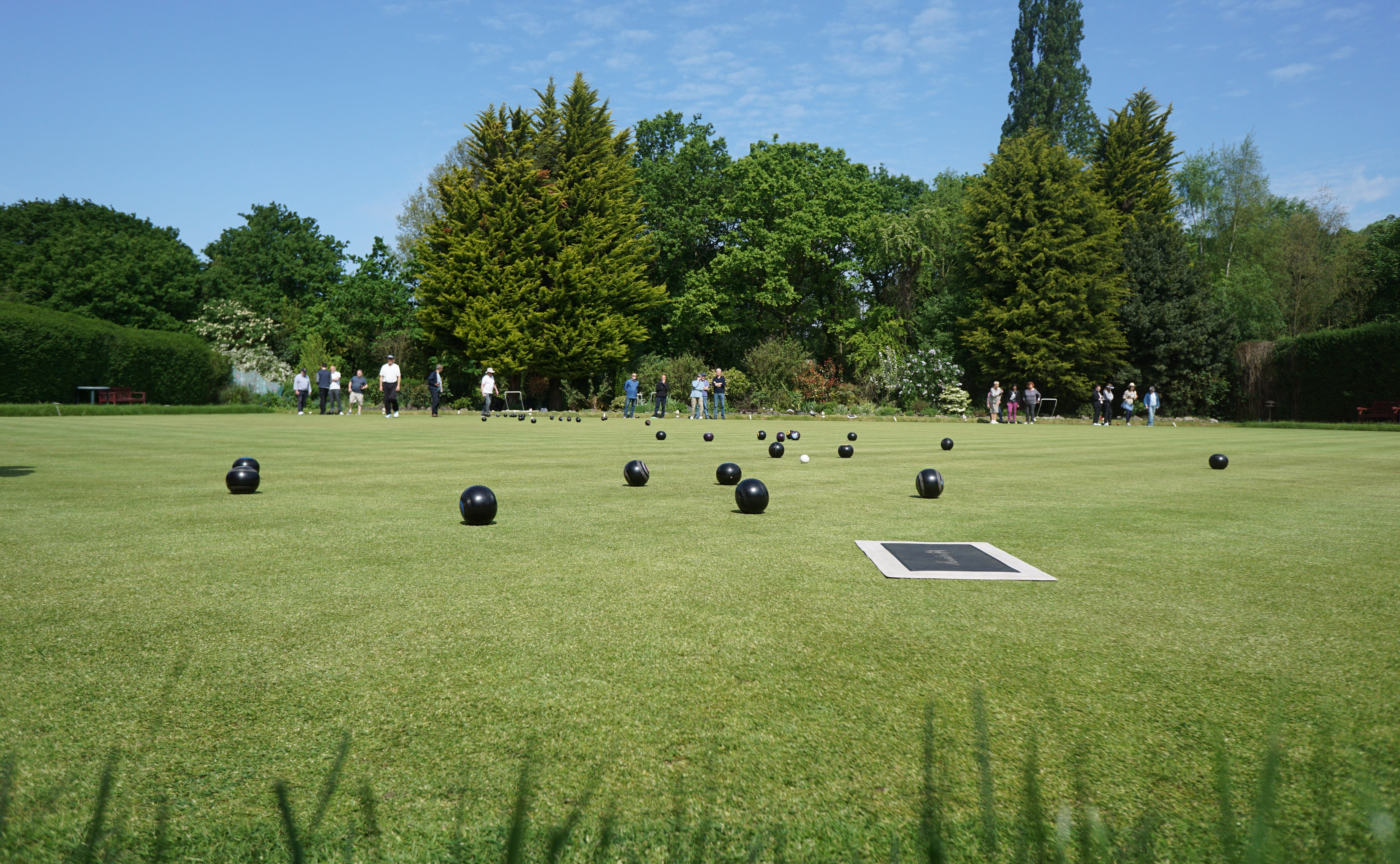 Free stock photo of green view, lawn bowls