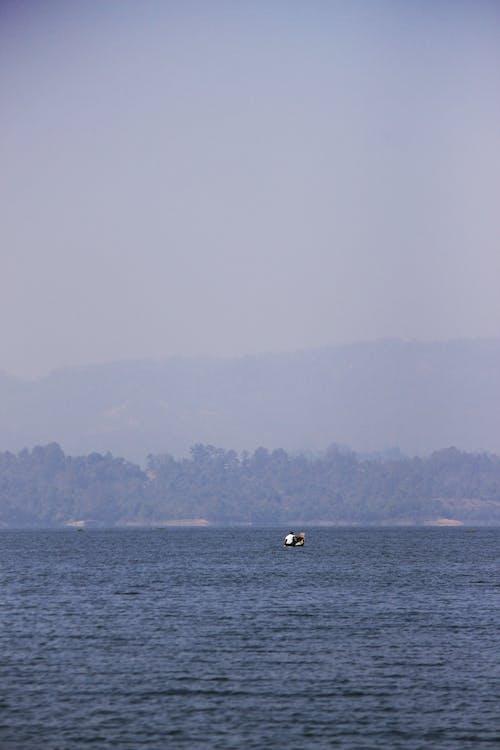 丘, 川, 船頭の無料の写真素材