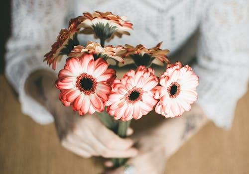 Selektive Fokusfotografie Einer Person Mit Roten Blütenblättern