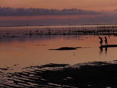 Безкоштовне стокове фото на тему «#outdoorchallenge, #захід сонця»