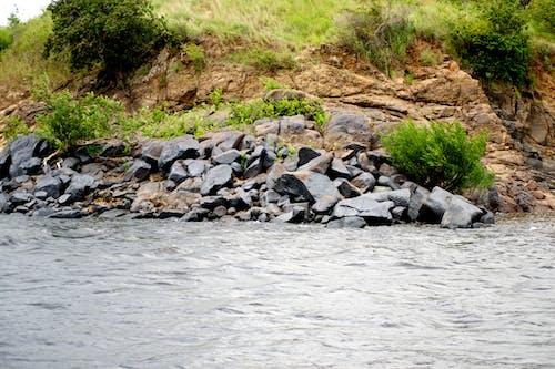 #rocks, #性质, #水, #河 的 免费素材照片