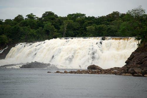 #性质, #河, #瀑布 的 免费素材照片