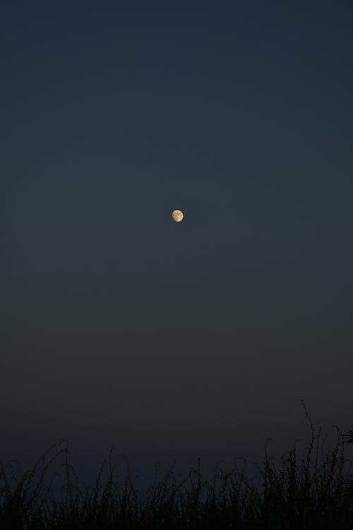 Darmowe zdjęcie z galerii z astronomia, księżyc, księżycowy