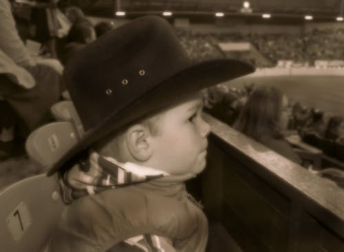 Základová fotografie zdarma na téma cowboy western