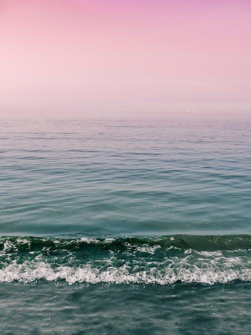 Immagine gratuita di acqua, alba, estate