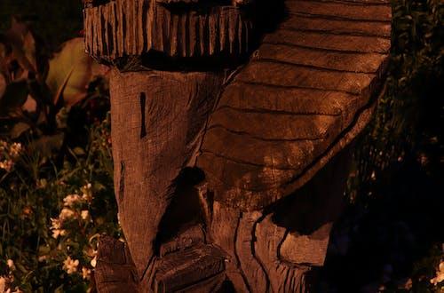 Fotobanka sbezplatnými fotkami na tému hrad, lesníctvo, nočný čas
