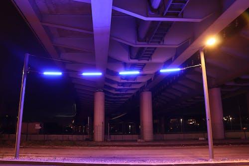 Fotobanka sbezplatnými fotkami na tému modrá, neónové osvetlenie, nočný čas
