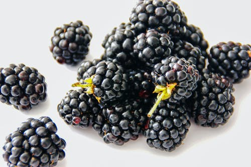 Gratis stockfoto met besjes, blackberries, braamstruik, close-up
