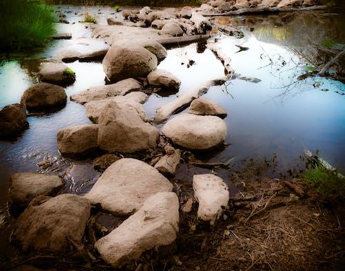 岩, 苔岩の無料の写真素材