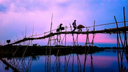 남자, 다리, 반사, 보라색의 무료 스톡 사진