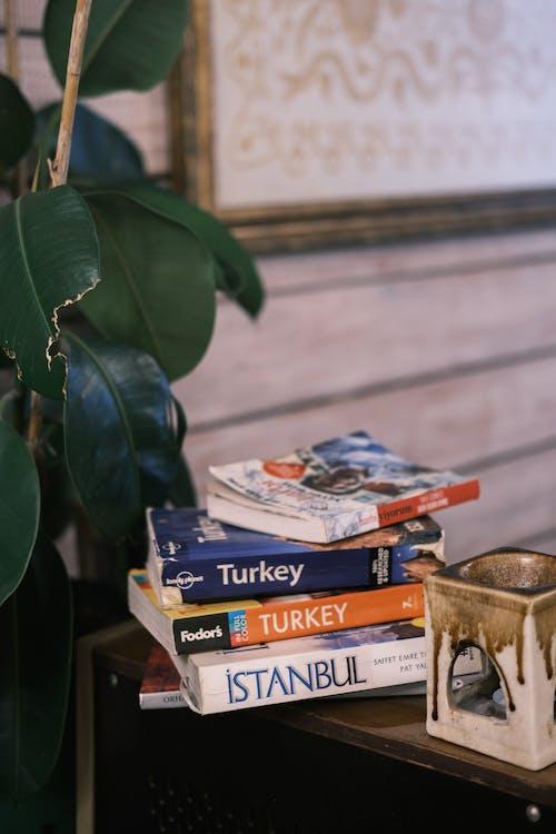 Ảnh lưu trữ miễn phí về bản văn, bộ sách, cà phê