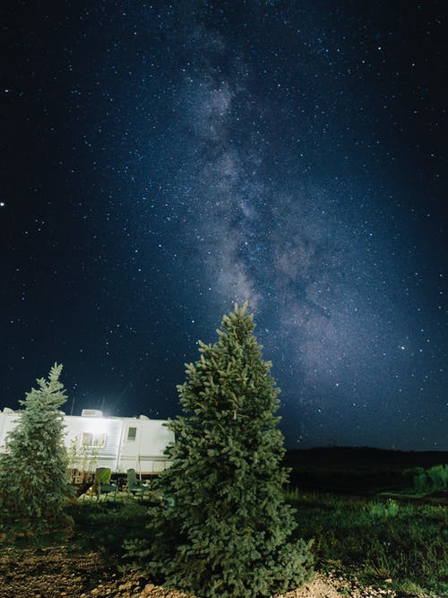 White House Near Green Trees Under Starry Night