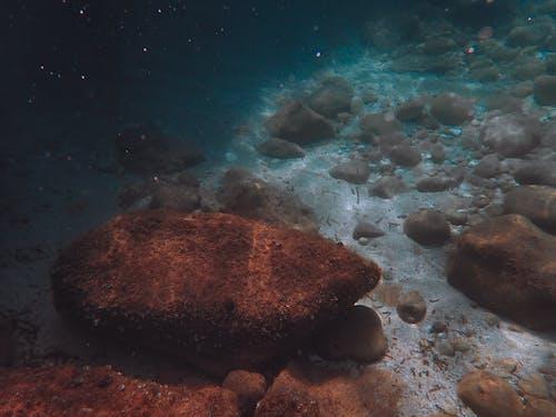Gratis lagerfoto af dyb, dykke, dykning