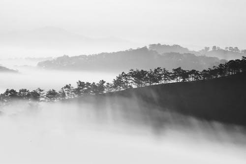 Gratis stockfoto met berg, dageraad, h2o