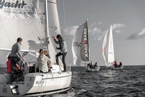 Free stock photo of action, boatman, catamaran