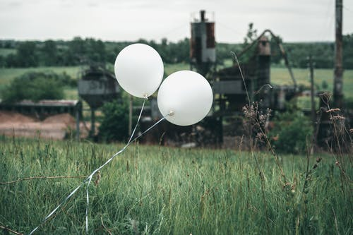 Balloons in the Grassland