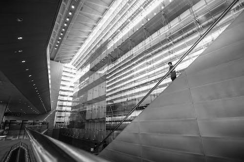 Základová fotografie zdarma na téma architektura, budova, černobílá, design