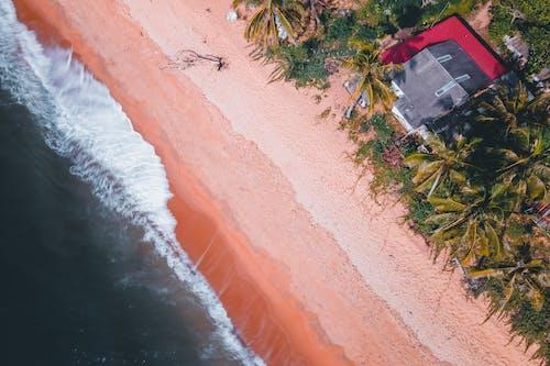 Ảnh lưu trữ miễn phí về biển, bờ biển, cát
