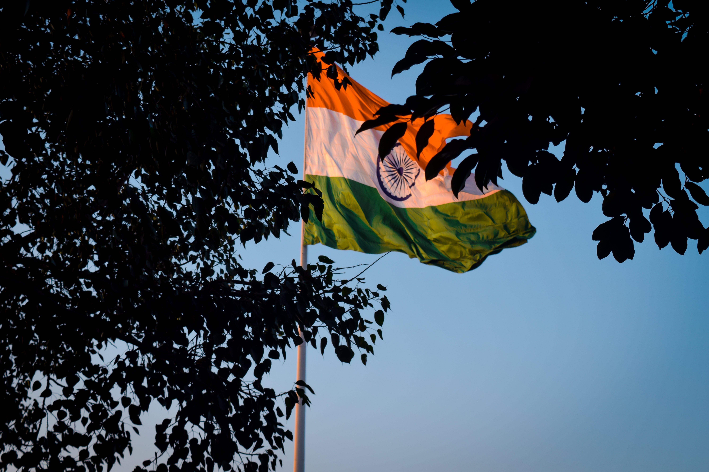Kostenloses Stock Foto zu bäume, blauer himmel, delhi, indien