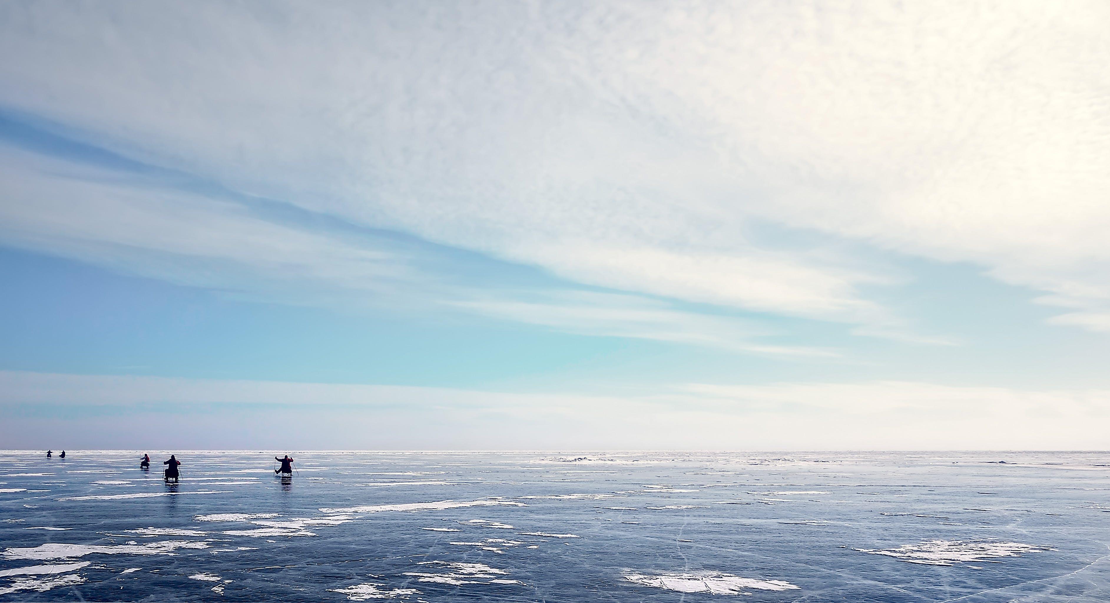 Photos gratuites de ciel, froid, givré, hiver
