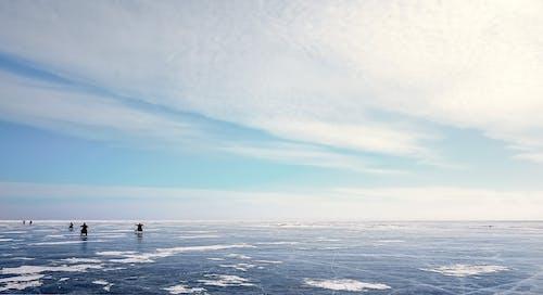 コールド, 冬, 凍る, 地平線の無料の写真素材