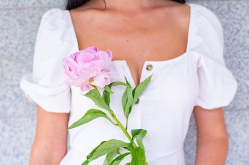 Photos gratuites de amour, beau, de la mariée