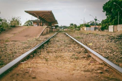 Gratis arkivbilde med dagslys, fokus, gress, jernbanestasjon