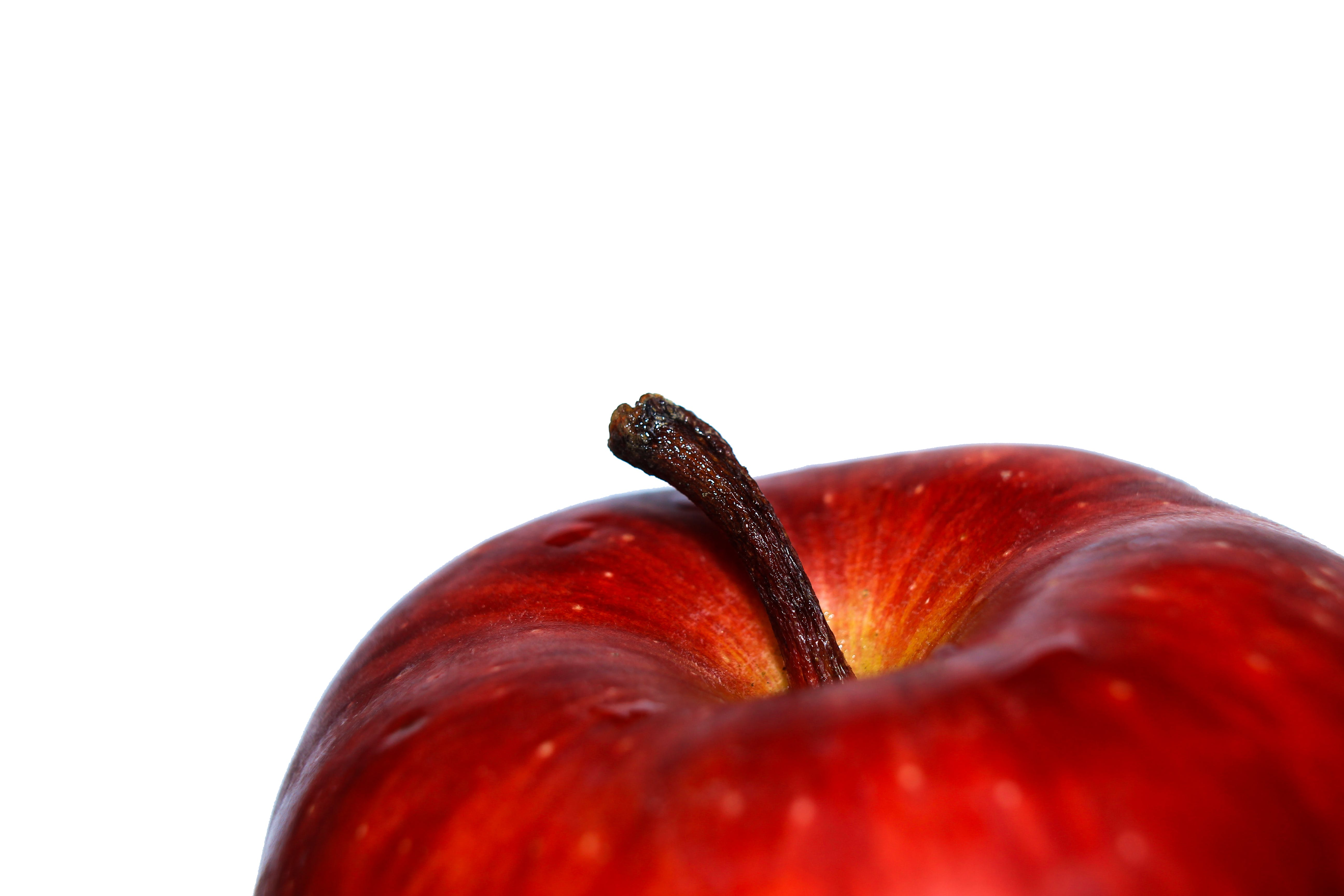 Red Apple Fruit Photography