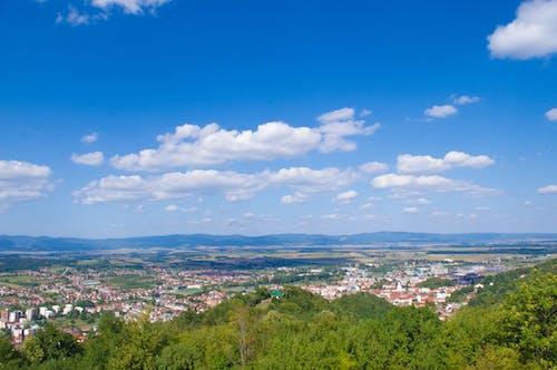 poå¾ega, 克羅地亞, 城市, 城市景觀 的 免费素材照片