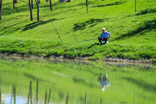 Free stock photo of fish, fisher, fisherman, grass