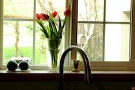 flowers, house, kitchen sink