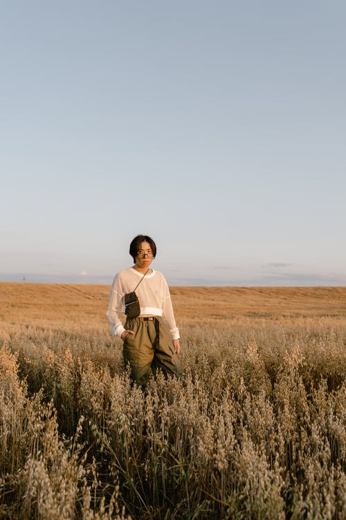 Immagine gratuita di azienda agricola, campo d'erba, cielo azzurro