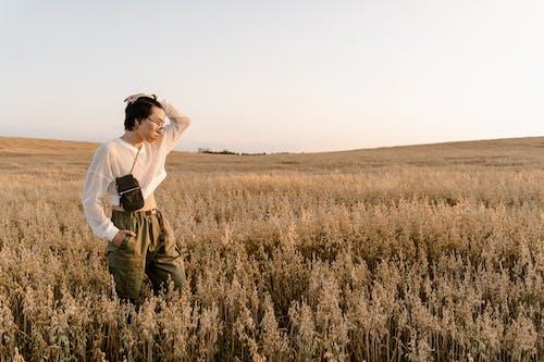 Immagine gratuita di azienda agricola, campo d'erba, esterno