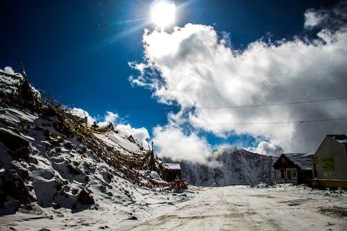 #mobilechallenge, 겨울, 겨울 동화나라, 겨울 풍경의 무료 스톡 사진