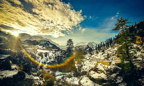 Kostenloses Stock Foto zu baum, berg, berggipfel