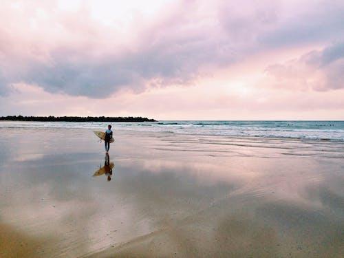サーフィン, ビーチ, 人, 海の無料の写真素材
