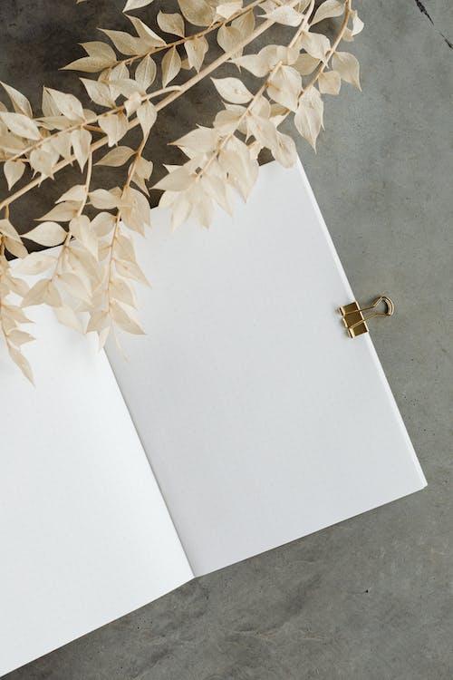 Kostnadsfri bild av abstrakt, anteckning, anteckningsbok