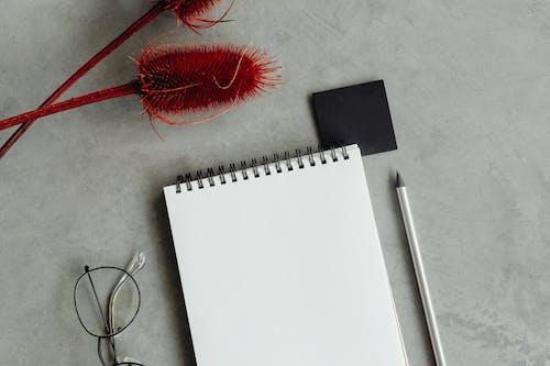 Kostnadsfri bild av anteckningsbok, bärbar dator, bokbindningar
