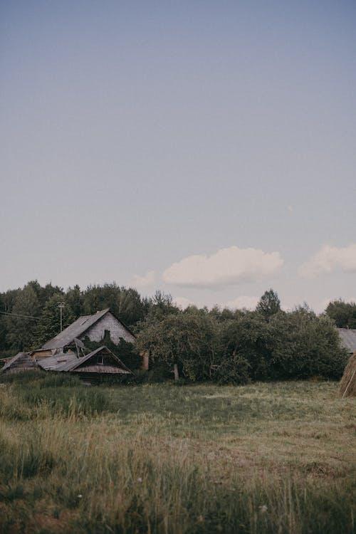 Безкоштовне стокове фото на тему «бунгало, Денне світло, дерево»