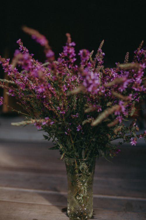 Безкоштовне стокове фото на тему «бузок, ваза, верес»