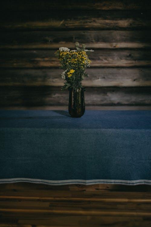 Безкоштовне стокове фото на тему «вода, декорація, Денне світло»