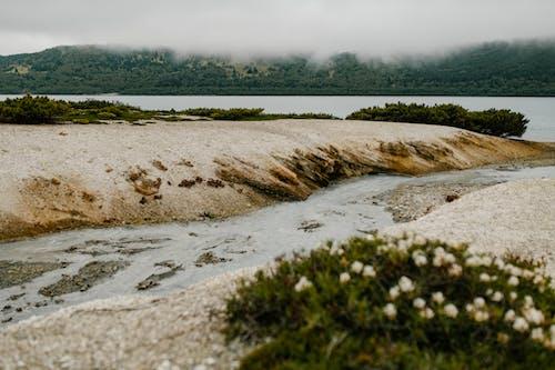 Ilmainen kuvapankkikuva tunnisteilla aavikko, autiomaa, hiekka