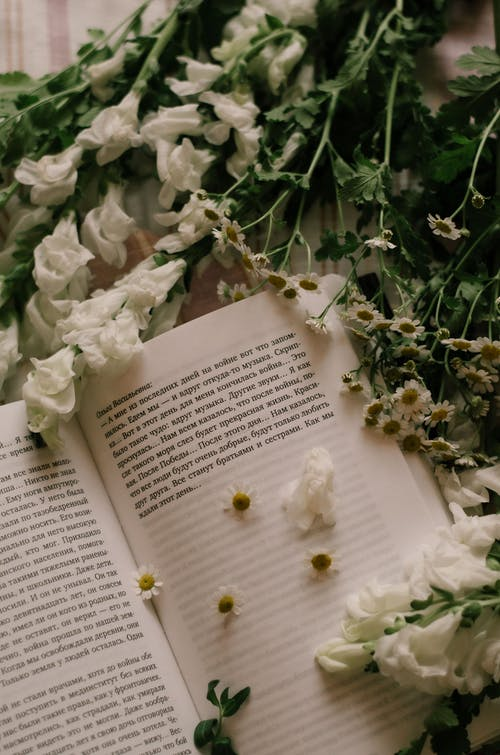White Flowers on Book Page