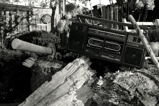 Grayscale Photography of Radio on Tree Trunk With Axe
