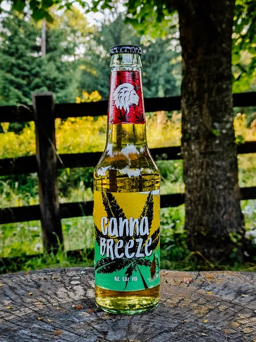 Free stock photo of beer, beer bottles, country