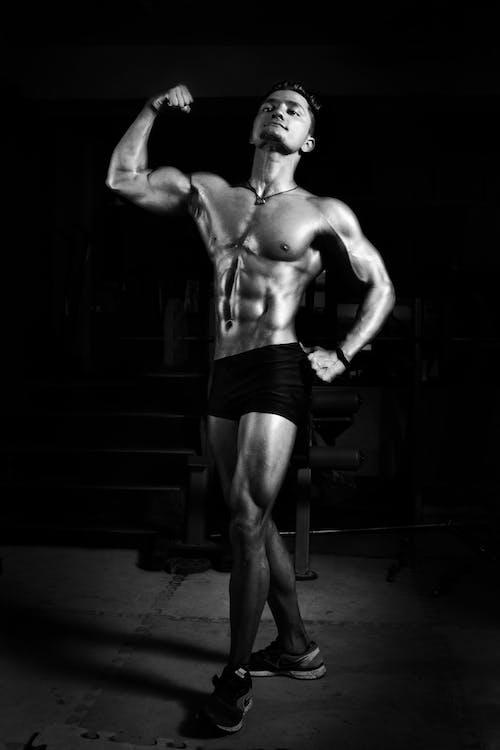 Gratis lagerfoto af bar overkrop, biceps, bodybuilder, bodybuilding