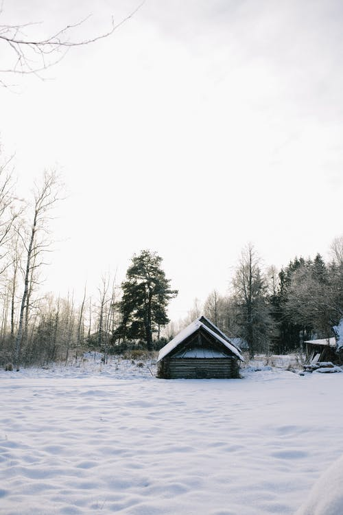 Безкоштовне стокове фото на тему «бунгало, Деревина, дерево»
