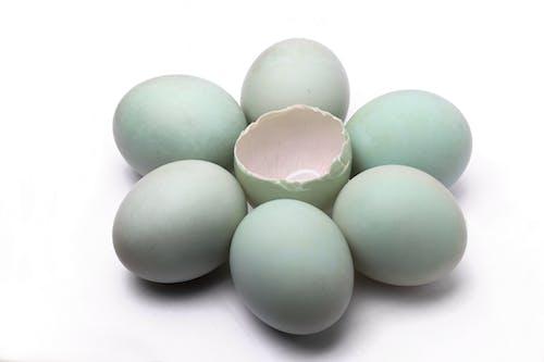 Imagine de stoc gratuită din coajă de ou, ouăle