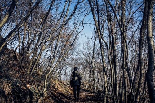 Man in Middle of Forest